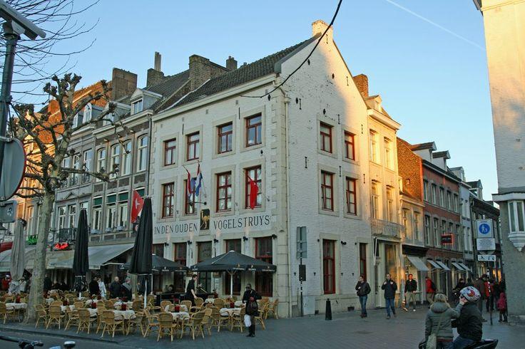 Vrijthof Maastricht cafe in den  struysvogel