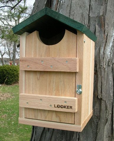 Screech Owl House. Screech owls are happy to use a man made bird house. The four inch entrance hole also makes this a Kestrel or Flicker bird house. Front opens for clean out.
