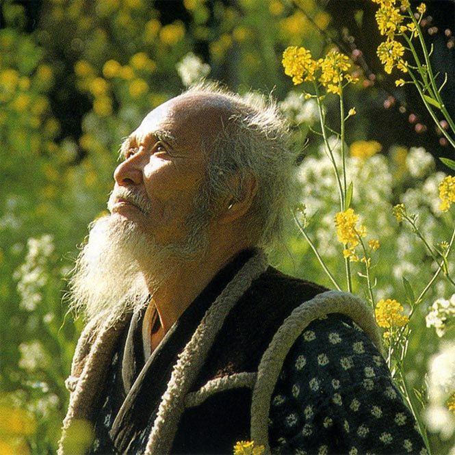 Doğal tarımın babası Fukuoka'dan sürdürülebilirlik ilkeleri