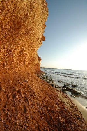 Playa de Mil Palmeras Foto