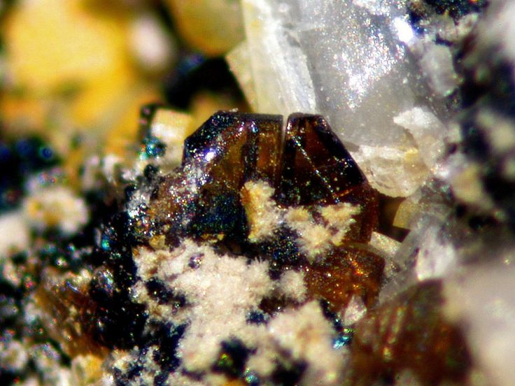 Derbylite, (Fe+++,Fe++,Ti)7Sb+++O13(OH), Buca della Vena Mine, Ponte Stazzemese, Stazzema, Apuan Alps, Lucca Province, Tuscany, Italy. Crystal size 0.3 mm. Copyright: © Roberto Bosi