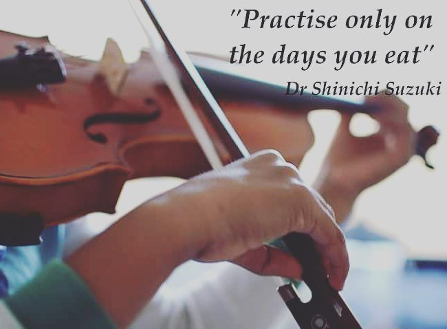 Quotes About Violinists: 17 Best Violin Quotes Images On Pinterest
