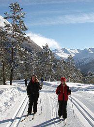 vinter aktiviteter: Langrenn i Stryn, Norge - Foto: Arvid Hatledal