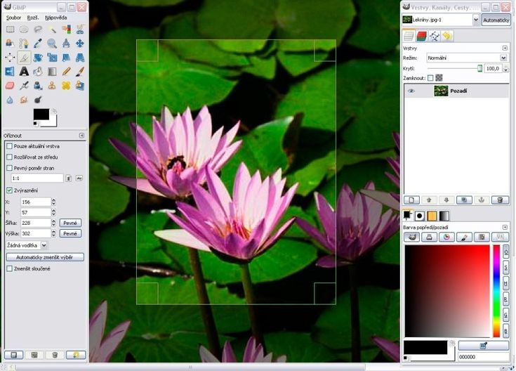 4 Free Graphic Design Programs for Beginners