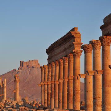 Palmyra, Syria, 11/03/2011 © Silvan Rehfeld