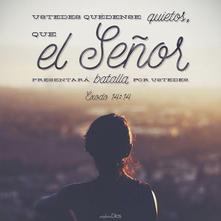 Versiculos De La Biblia De Fe: Ustedes Quédense Quietos, Que El #Señor Presentará Batalla