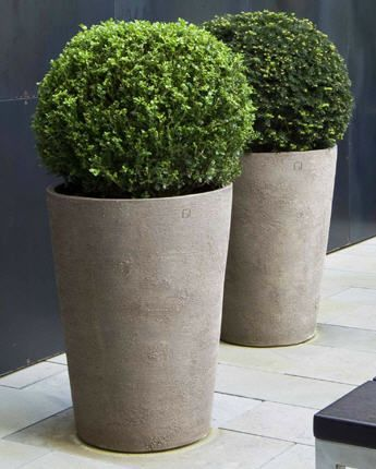 Contemporary pots and topiary