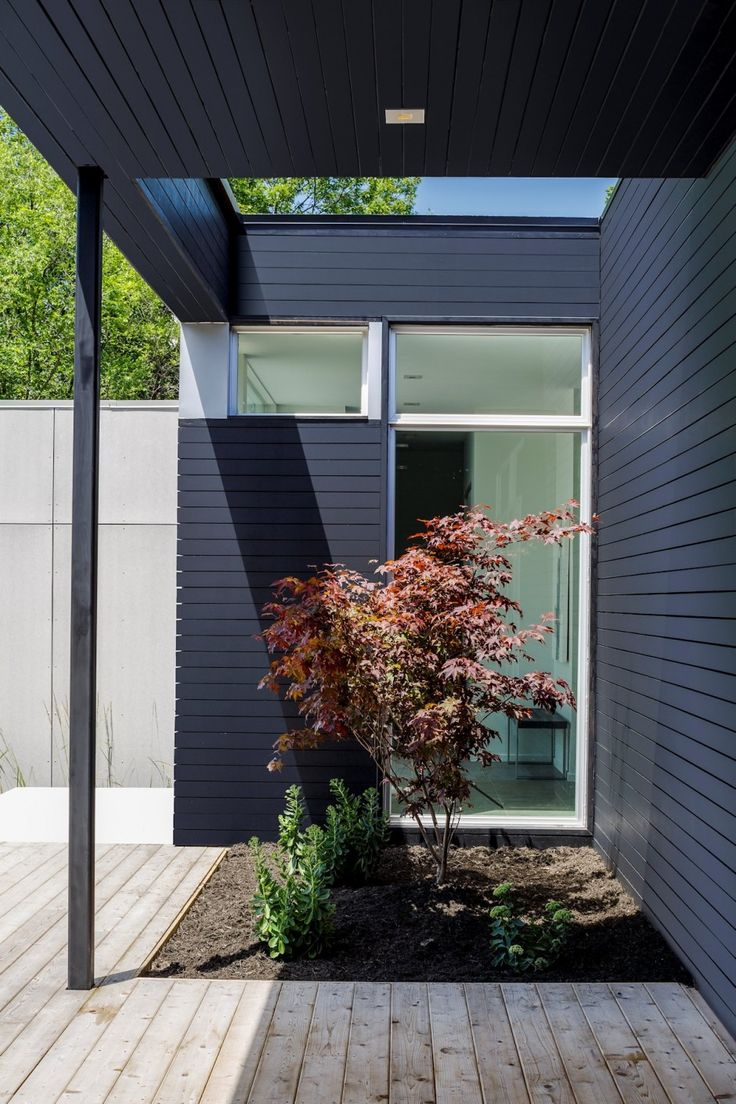 Cohen residence entry courtyard modern landscape houston by rh - Find This Pin And More On Modern Home By Mydstudio