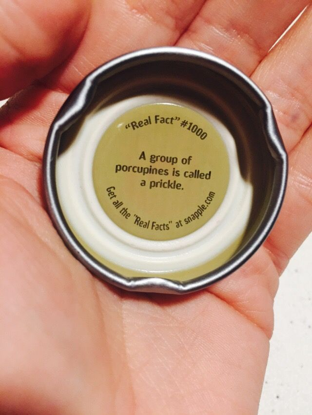 Snapple real fact 1000