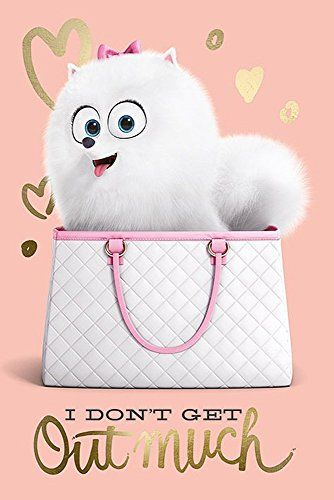 "The Secret Life Of Pets Poster I Don't get Out Much (24""x... https://www.amazon.ca/dp/B01F9FV5CC/ref=cm_sw_r_pi_dp_QdlLxb2R3ZVNN"
