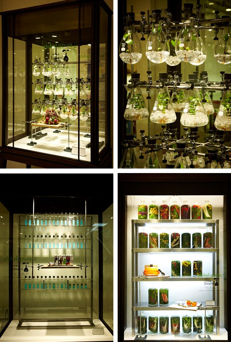 A botanical laboratory, realized by no other than Azuma Makoto for Isetan.