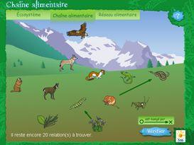 Espace Elèves   Le site de la Fondation La main à la pâte  ANIMATIONS