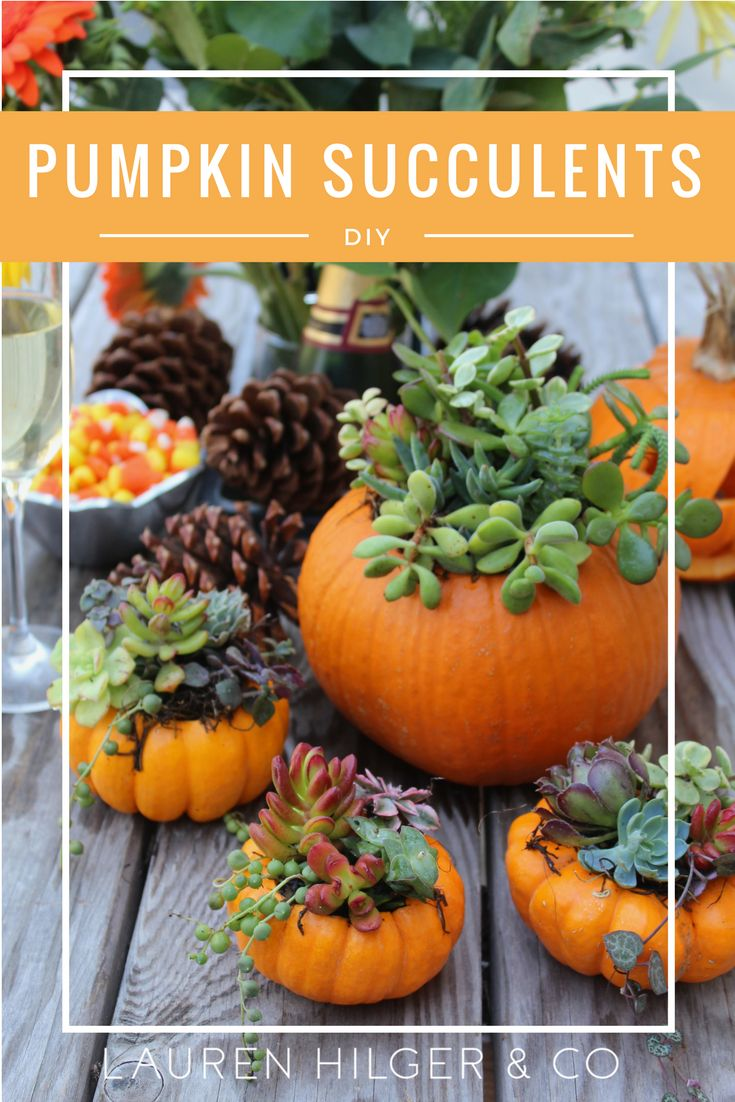 Best 25+ Pumpkin centerpieces ideas on Pinterest