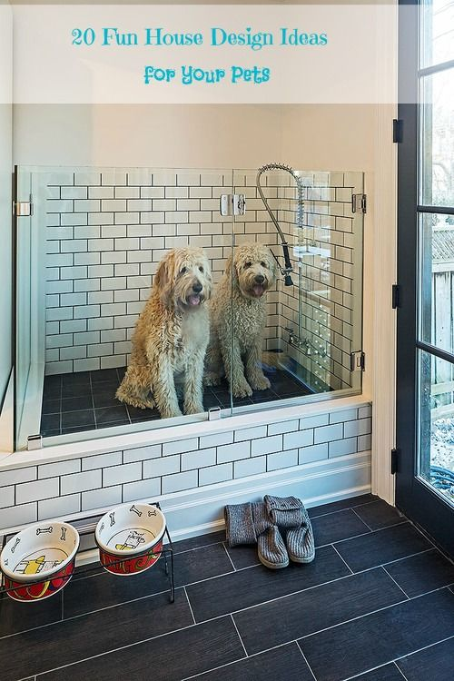 20 Fun House Design Ideas for Your Pets These are 20 of my favorite pet-friendly house design ideas from Houzz.  I'd love a shower area just for our dog and I b(...)