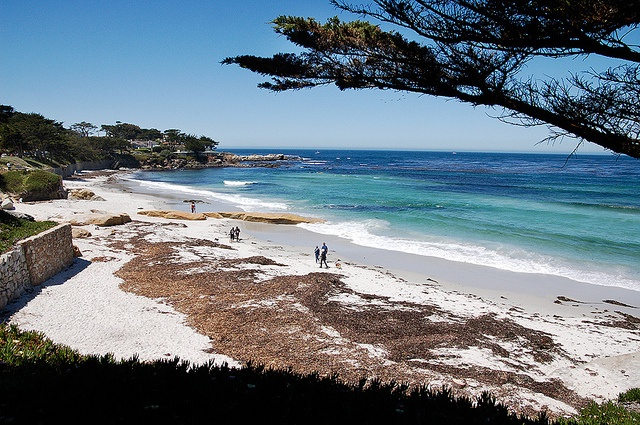 Carmel Beach, CA. Difficult to find a pic that does it justice. One of my favorite beaches in the US.