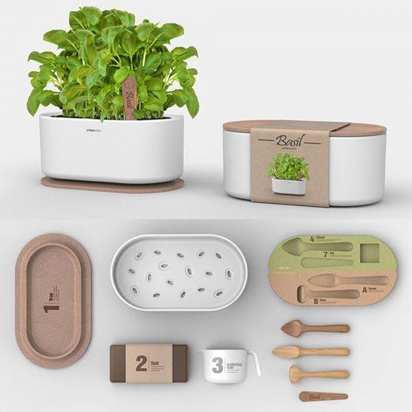 Зелень на вырост: 11 наборов для выращивания растений — Seasons Life!