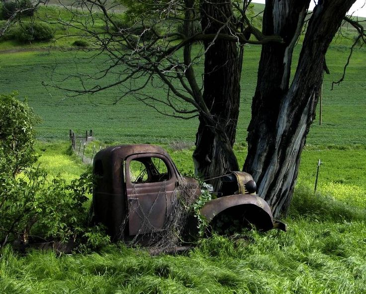 Out to pasture..rusty