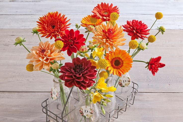 DECO.Flowers.010.900x600