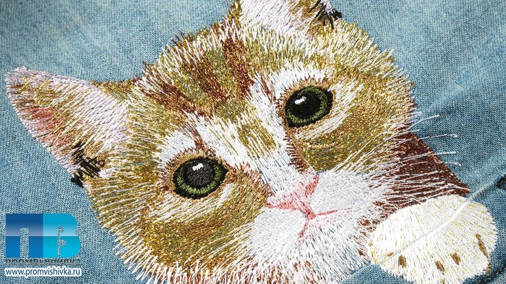 Вышивка кошек крупным планом #embroidery #cat #кошки #вышивка