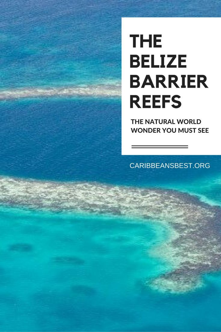 The Belize Barrier Reef, a Natural World Wonder You Must See caribbeansbest.org/