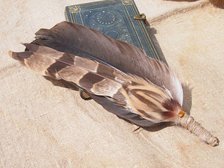 Smudge fan- hawk