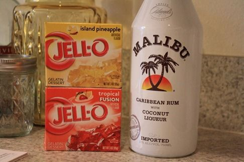 Everyday is a Celebration: Malibu Jell-O Shots {Parent Party Time!}