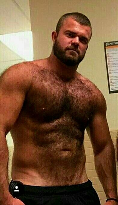 big hairy bear men