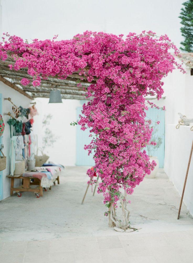 Formentera - Carnet de Voyage - Le Blog de Madame C                                                                                                                                                                                 Más