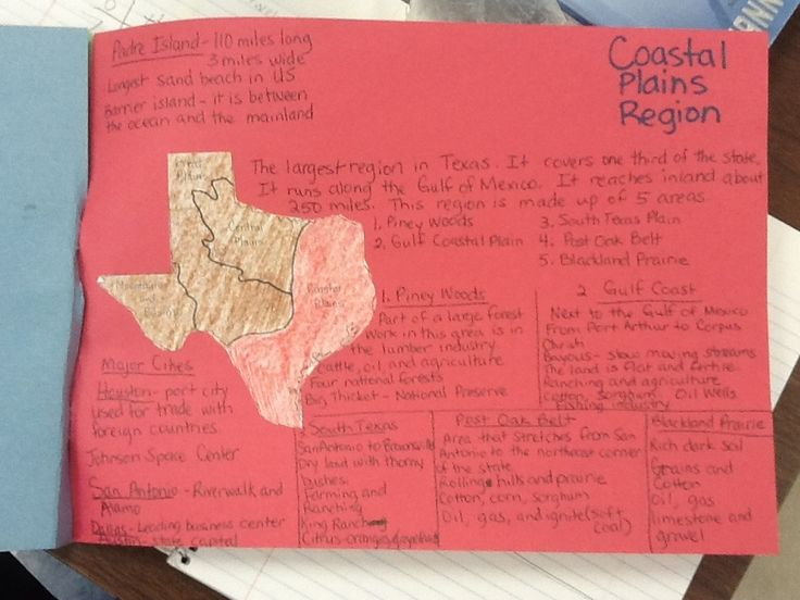 Texas History Classroom Decorations ~ Best th grade social studies images on pinterest