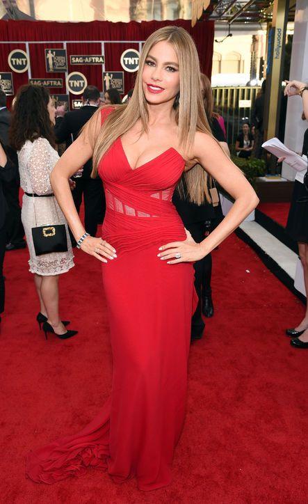 Sofia Vergara in Donna Karan at the SAG Awards