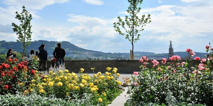 Rosengarten Bern - Bern Tourismus