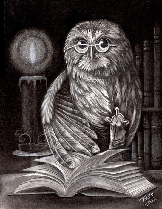 Black and white portrait of the owl and a book!