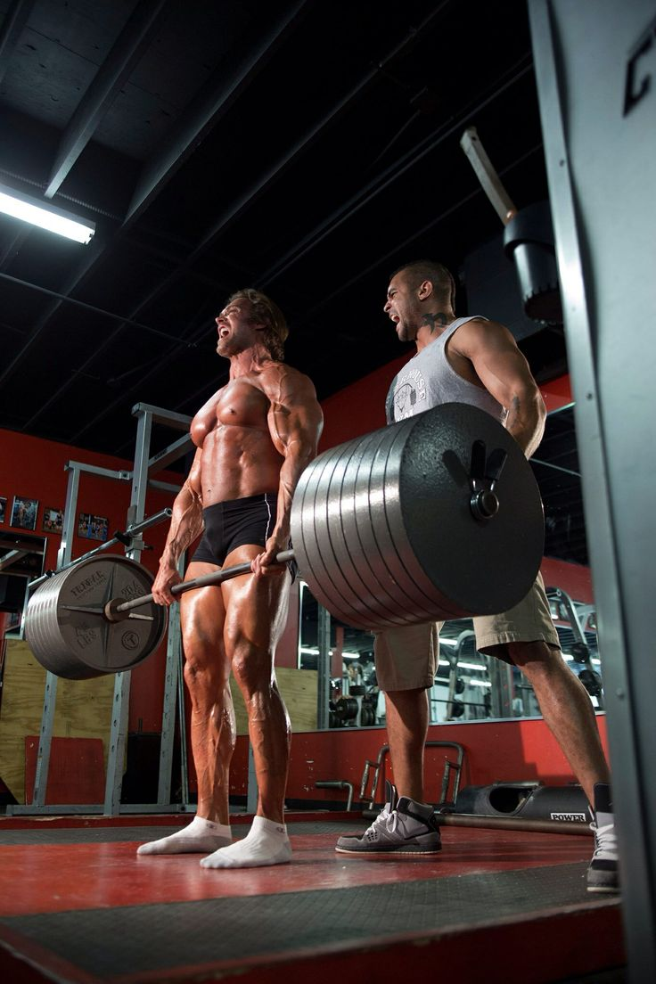 Pin by Jay Stimac on Mike O'Hearn | Weight training ...