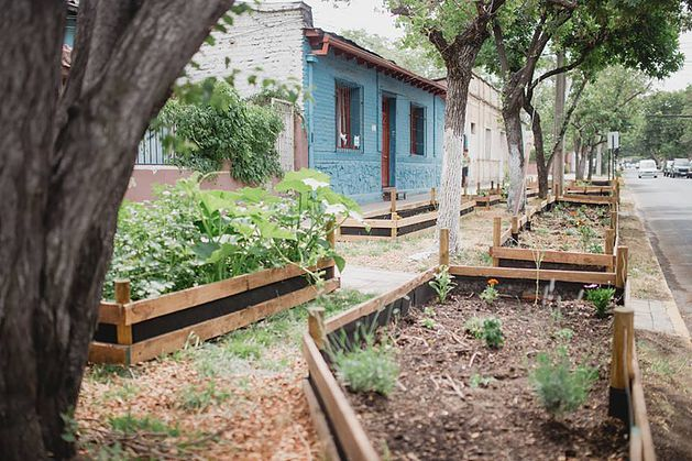 """La idea es de Agricultura Familiar. El plan denominado """"Veredas Productivas"""" tiene como objetivo es concientizar a la población urbana sobre la importancia de plantar alimentos en todos los lugares posibles, como el frente de su casa, el patio trasero, el jardín o en planteras en los balcones y """"comprobar así que a través de una práctica sencilla y milenaria podemos mejorar el ambiente urbano y nuestra calidad de vida"""", indicaron."""