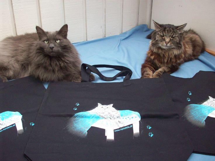 Nu då blå månad för prostatacancern. Killarna med den rejäla och bra tygväskan från oss på www.katt4you.se