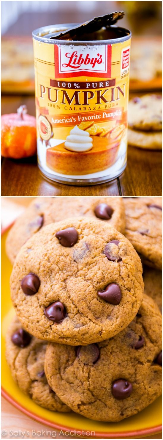These CHEWY (not cakey!) pumpkin chocolate chip cookies are a must try recipe from sallysbakingaddiction.com. You will love them!