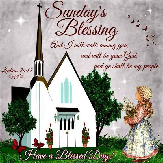 Sunday's Blessings  sunday sunday quotes happy sunday sunday blessings happy sunday quotes sunday pics sunday image quotes sunday images