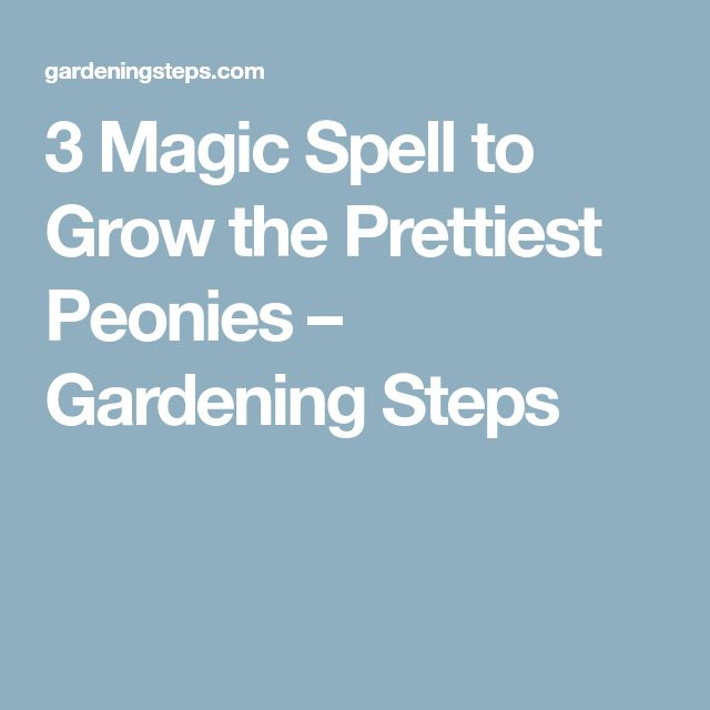 3 Magic Spell to Grow the Prettiest Peonies – Gardening Steps