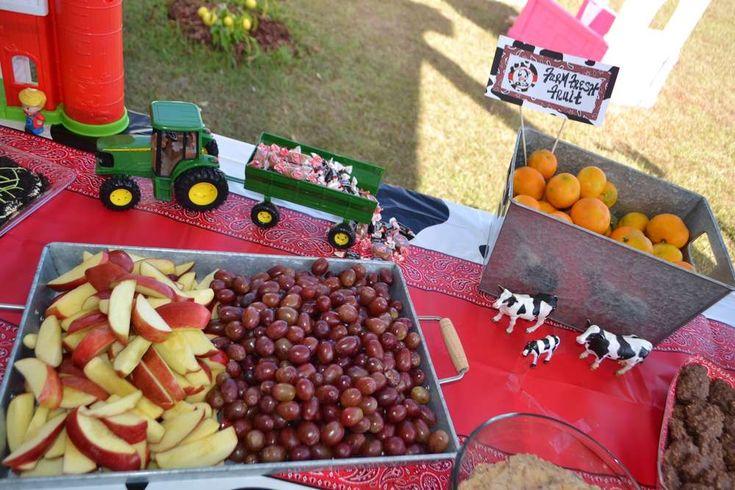 MOO! MOO!  Makenna's TWO!   CatchMyParty.com  #BarnyardParty #FarmParty #Cows #Fruit  #JohnDeere