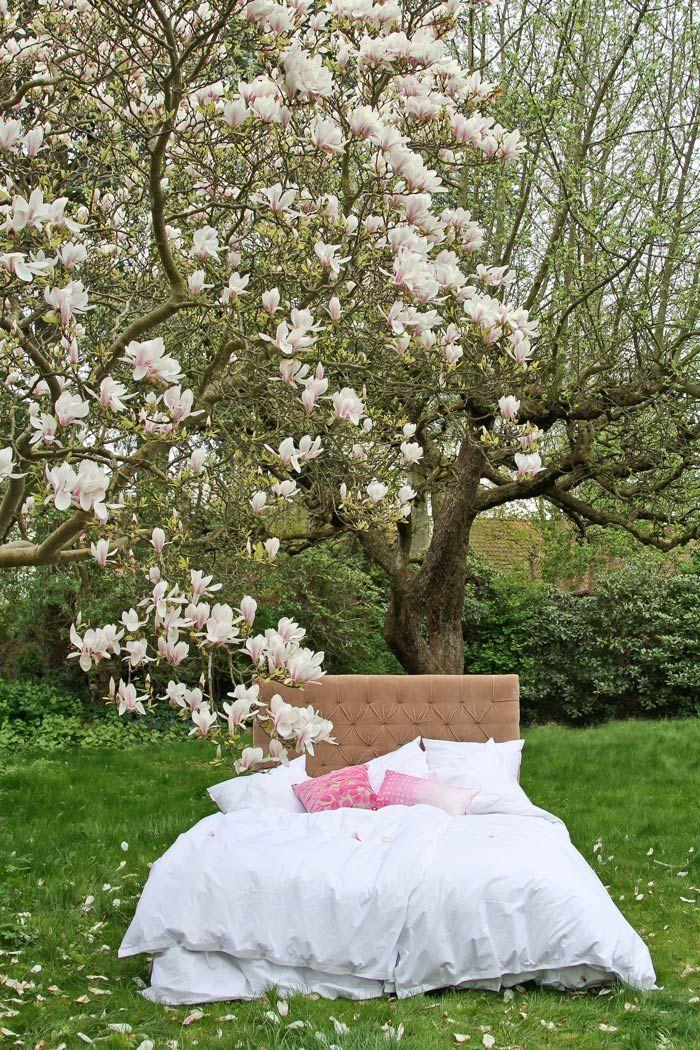 Hazel velvet upholsteret headboard - Add a little luxury from MOLLYSHOME.COM