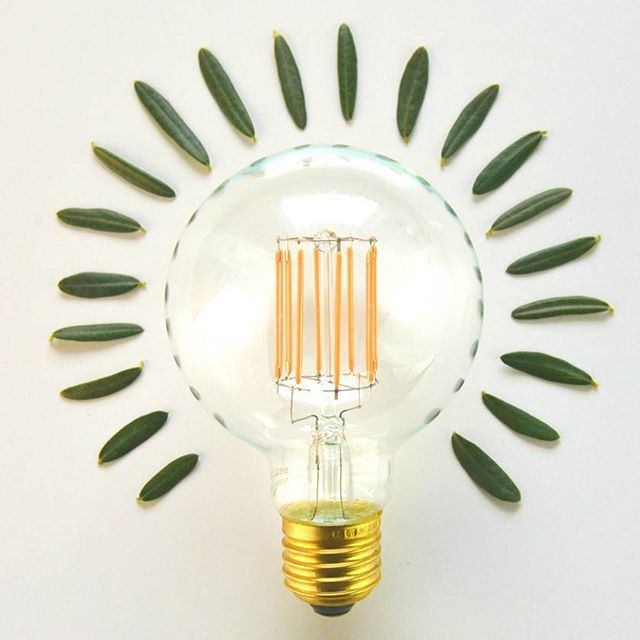 Using new technology like LED to achieve a vintage filament look means far less power use and far fewer replacements. This baby would use around 45w but thanks to new LED technology only uses around 6w! It also has a lifespan of 20,000 hours compared to the traditional filaments 1,000. What more could we want? 😀  I💡🍃⭐🍃💡I  #vintagelighting #lightingdesign #interiordesign #ledlights #interior #interior123 #home #homedecor #design #instahome #instadesign #decor #lighting #lights #light…