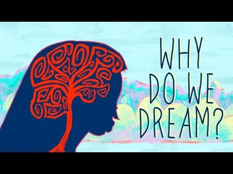 In the 3rd millennium BCE, Mesopotamian kings recorded and interpreted  their dreams on wax tablets. In the years since, we haven't paused in  our quest to understand why we dream. And while we still don't have any  definitive answers, we have some theories. Amy Adkins reveals the top  seven reasons why we might dream.