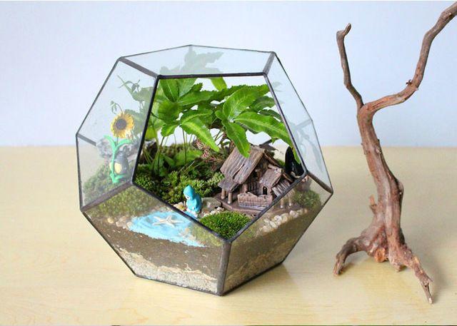 Террариум 'Додекаэдр' - Террариумы для суккулентов, мелких животных и растения с металлической сеткой, Настольная cтеклянные вазы для продажи, Производитель декоративный террариум в Китае