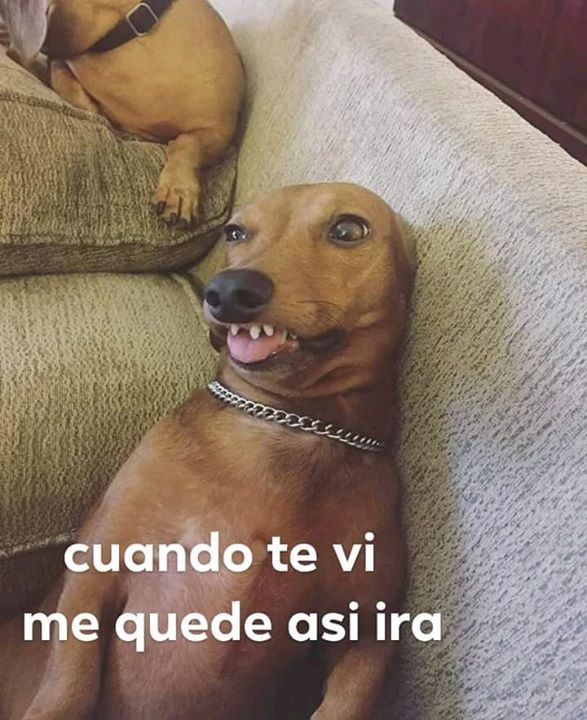 Etiqueta Tu Crush Memesinreallife Cute Memes Funny Spanish Memes Crush Memes