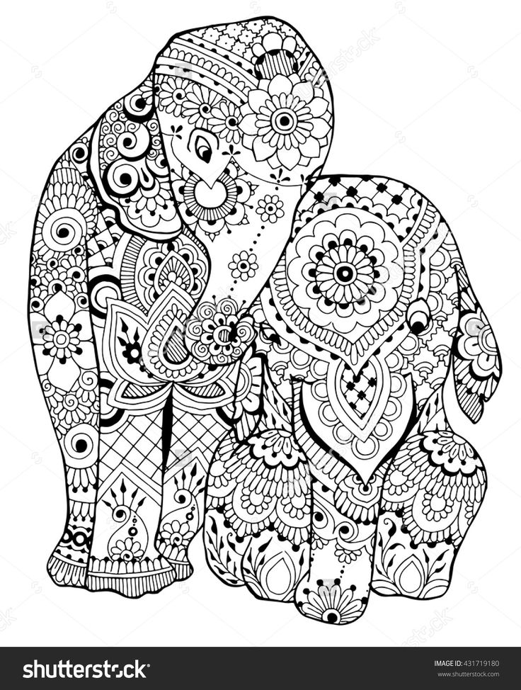 Elephants coloring page I 431719180 Shutterstock Adult