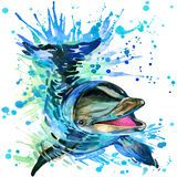 Dolphin Illustration With Splash Watercolor Textured Background - Download From Over 41 Million High Quality Stock Photos, Images, Vectors. Sign up for FREE today. Image: 55328392