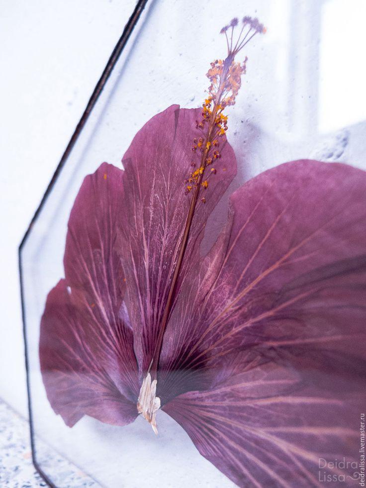 Купить Китайская роза - брусничный, китайская роза, роза, цветок, гербарий, Витраж, тиффани, интерьер