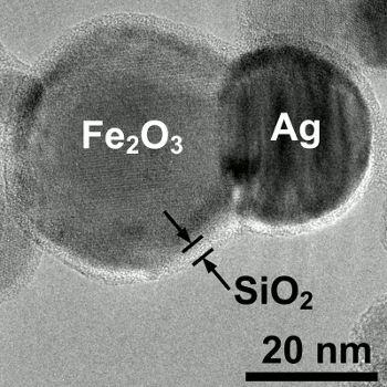 """50 días después de que los científicos aplicaran una pequeña dosis de nanopartículas de plata, los ambientes experimentales produjeron cerca de un tercio menos biomasa en algunas de las plantas y microbios. """"Nadie sabe en realidad cuales son los efectos de estas partículas en el medio ambiente"""", afirmó Benjamin Colman, un doctor del departamento de Biología de la Universidad de Duke."""