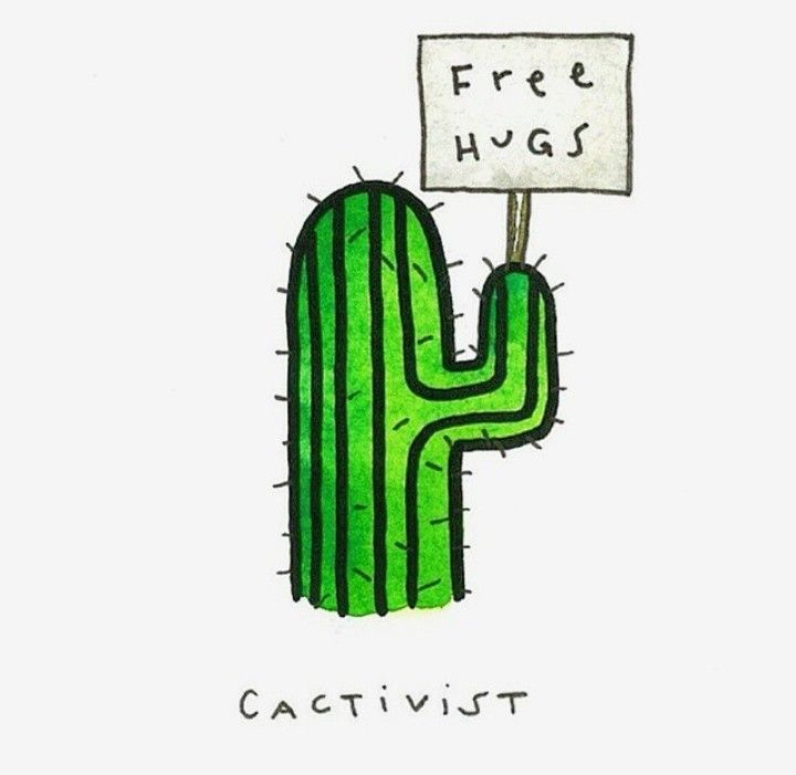 Pin By Samantha Gebhart On Cactus Drawing Cactus Illustration Cactus Quotes