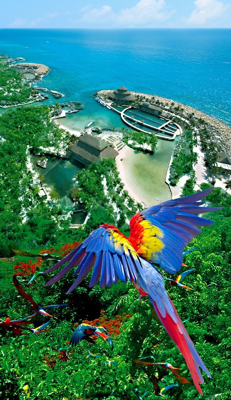 Xcaret, playa del carmen México
